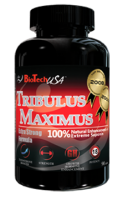 Tribulus_maximus.png